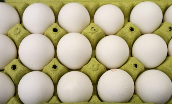 هرگز تخم مرغ شانهای نگیرید!