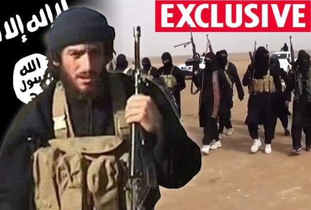 رهبر آینده داعش کیست؟ + عکس