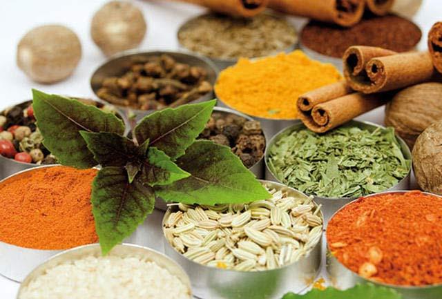 گیاهانی برای درمان درد