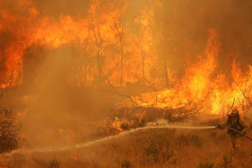 تلاش برای خاموش کردن آتش سوزی طبیعی و گسترده در جنگل های حومه شهر لس آنجلس آمریکا