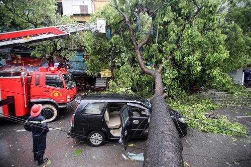 صدمات توفان در شهر هانوی ویتنام