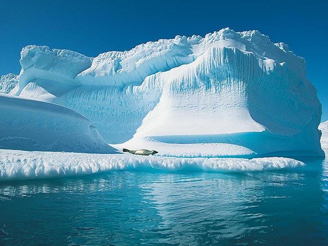 حقایقی عجیب در مورد قطب شمال