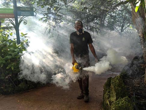 سم پاشی برای مقابله با پشه های ناقل ویروس زیکا در شهر میامی ایالت فلوریدا آمریکا