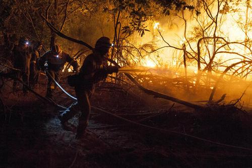 تلاش آتش نشانان برای مهار آتش سوزی جنگل - اسپانیا