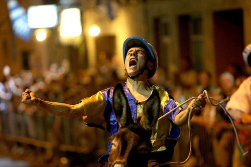 شادمانی برنده مسابقات الاغ سواری در توسکانی ایتالیا