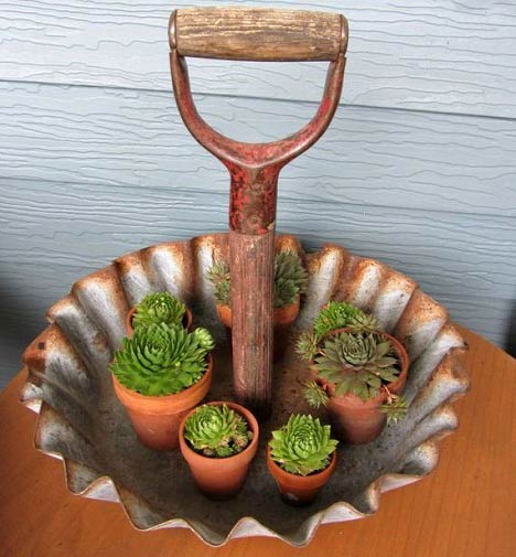 تصاویری از خلاقیت با ابزارهای قدیمی باغ
