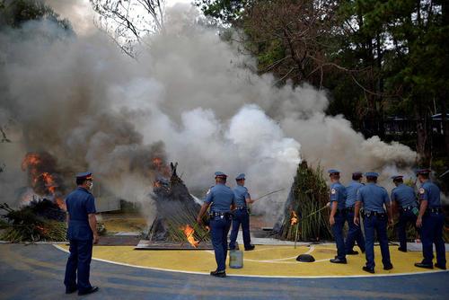 آتش زدن محموله قاچاق ماری جوانا از سوی پلیس فیلیپین
