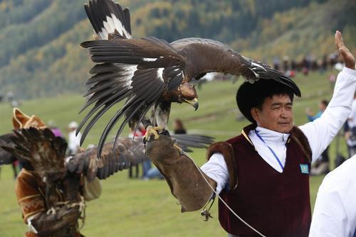 مسابقات بین المللی شکار با شاهین در قرقیزستان