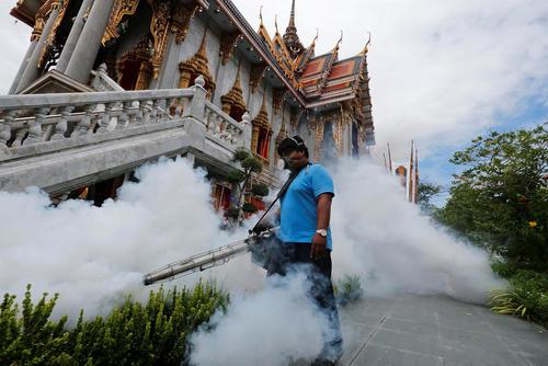 سم پاشی برای مقابله با پشه های حامل ویروس زیکا – شهر بانکوک تایلند