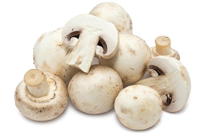 خوردن قارچ برای چه کسانی مضر است؟