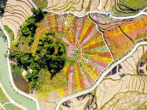 تصویری هوایی از زمین های کشاورزی روستای