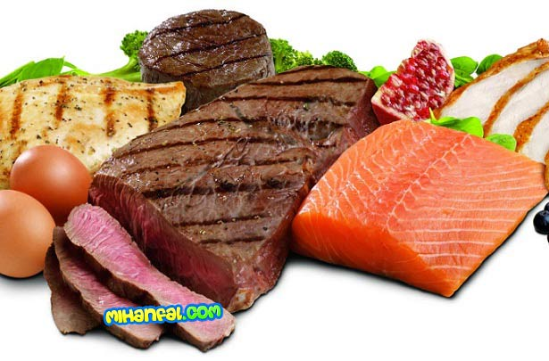 نشانه های کمبود پروتئین در بدن
