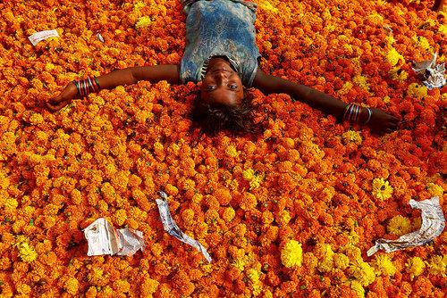 بازار گل در بمبئی هند