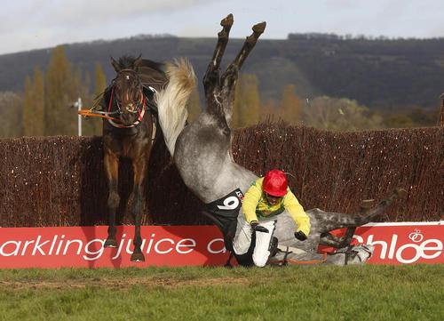 مسابقات اسب سواری – انگلیس