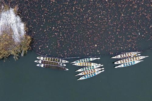 قایق ها روی دریاچه دامینگ در شهر جینان چین