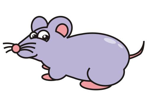 قصه ی کودکانه موش کور