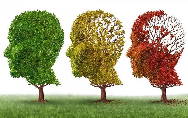 ۵ روش پیشگیری از فراموشی و تقویت حافظه