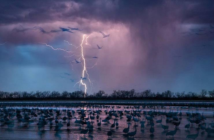 بهترین عکس ها از لنز نشنال جئوگرافیک