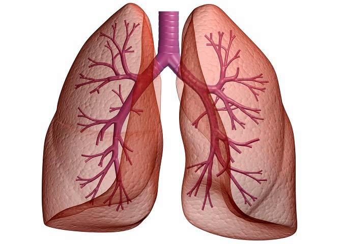 عفونت های خطرناک در ریه که می تواند به کشتنتان دهد!