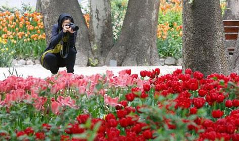 بهترین مکان های عکاسی در تهران