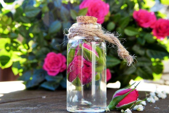 بهترین روش تهیه گلاب در خانه
