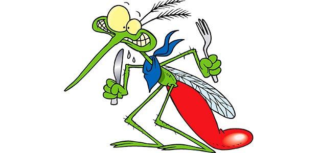 ۱۰ واقعیت جالب و باور نکردنی در مورد پشه ها