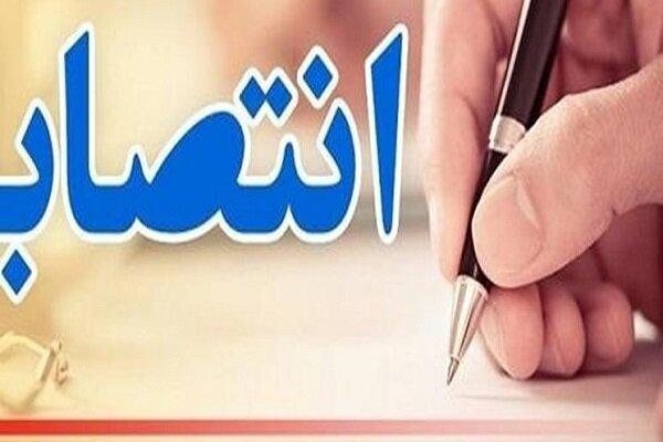 «علی رشیدی» سرپرست ورزش و جوانان همدان شد